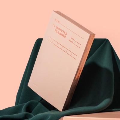 [스페셜] 텐미닛 플래너 31DAYS - 샤인피치 모트모트