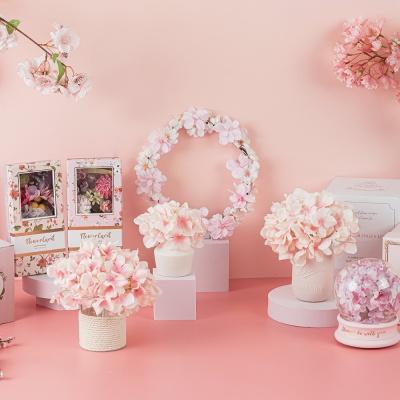 벚꽃 블라썸 페스티발 - Cherry blossom festival