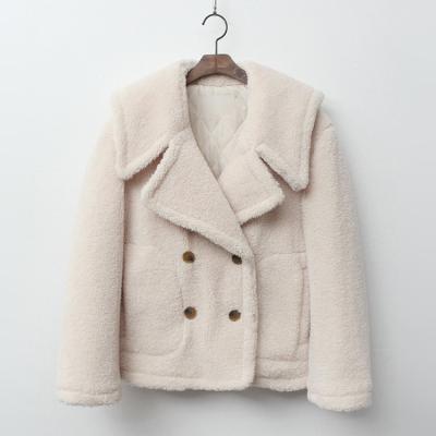 Teddy Bear Sailor Coat - 누빔안감