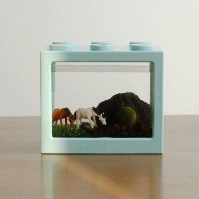 제주 국산 마리모 키우기 DIY 세트(마리모:소)