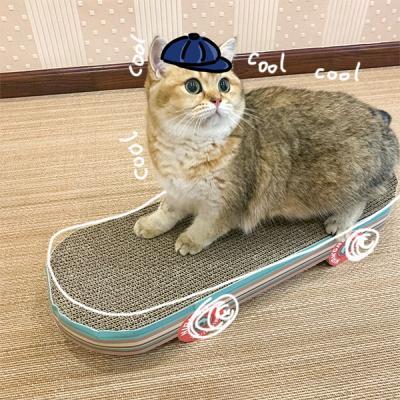 스노보드 고양이 스크래쳐