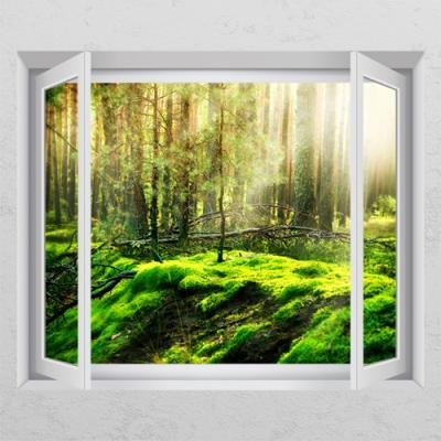 cs150-방치된숲_창문그림액자