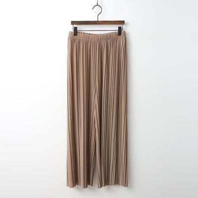 Pleatd Wide Pants