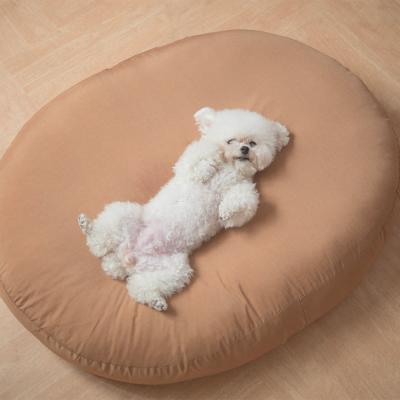 마약방석 사계절 꿀잠 애견방석 강아지 고양이 NA03