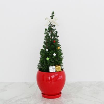 B.화분스탠드+생화 크리스마스 트리+선물상자 세트