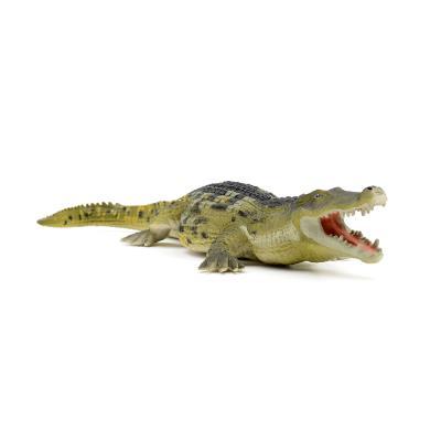 402601 데이노수쿠스 Deinosuchus