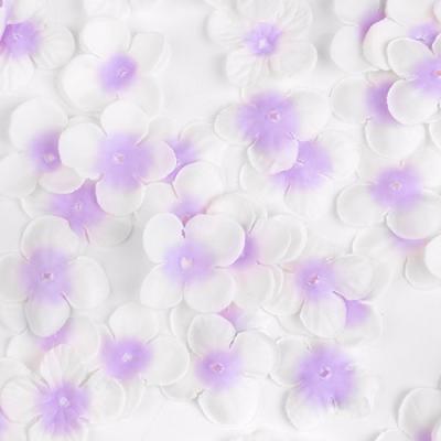 꽃길만 걷자 라벤더 꽃잎