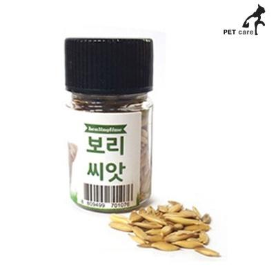힐링타임 보리씨앗 20g