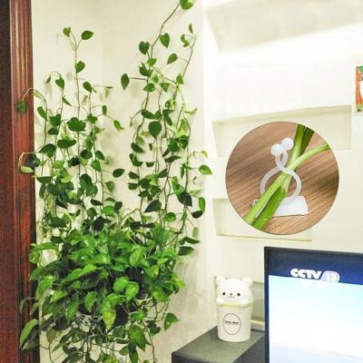 식물꾸미기 장미넝쿨 고정걸이 고정후크 20p세트