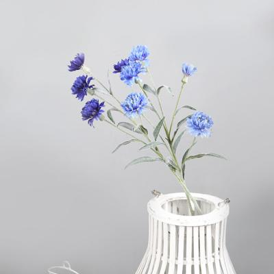 고속터미널꽃시장 미니 다알리아 68cm 시들지않는꽃