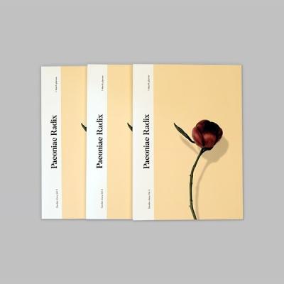 [루카랩] 한 달 다이어리 Vol.3