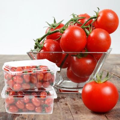 [농부의하루] 상큼,새콤 탱탱한 방울 토마토 1kgx2팩