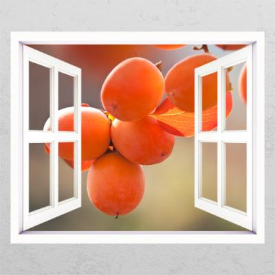 ts429-재물운높여주는감나무_창문그림액자