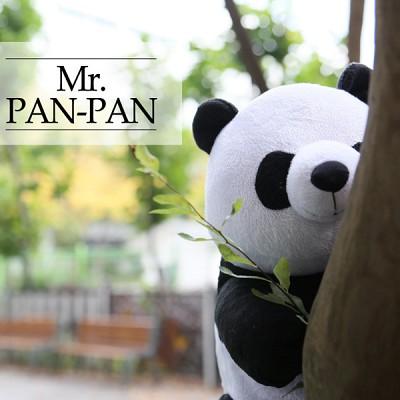 판다안마인형 미스터판판 Mr.PAN-PAN
