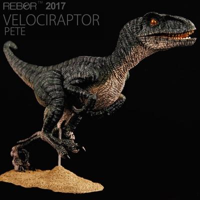 [리보]REBOR/벨로시랩터 피트 PETE