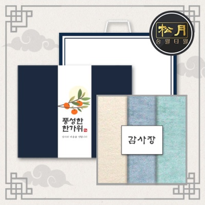 송월 추석선물세트 라이트무지 세면타월 3매세트