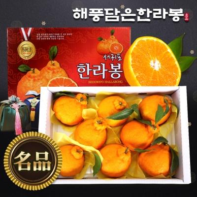 [해풍담은] 한라봉 로얄과 3kg(9~10과)