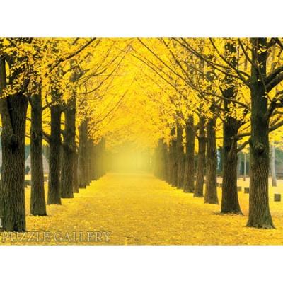1000조각 직소퍼즐▶ 은행나무 가로수길 (PK1000-3160