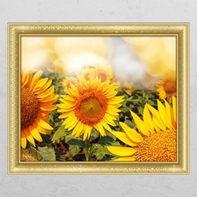 tl386-풍수황금빛해바라기_창문그림액자