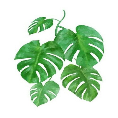 [DIY명화]Q3222 Leaf(잎) size 40*50cm