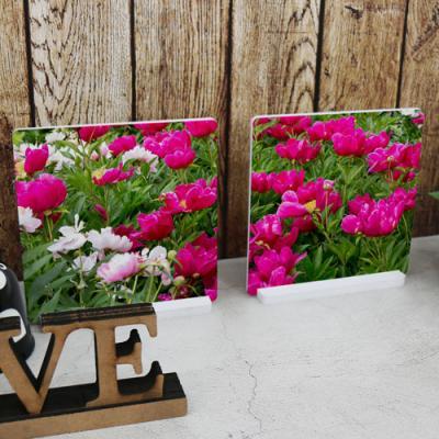 ta586-스탠드액자2P_풍수붉은빛의모란꽃밭
