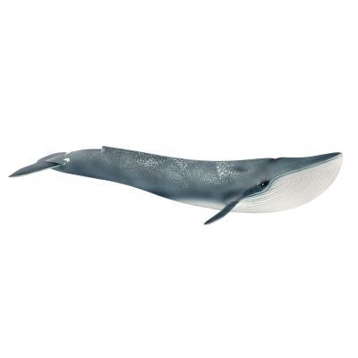 [슐라이히]대왕고래