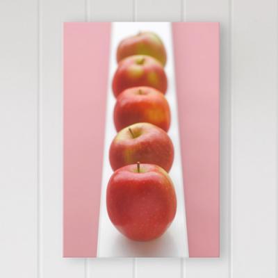 cq149-상큼하고맛있는사과들_중형노프레임
