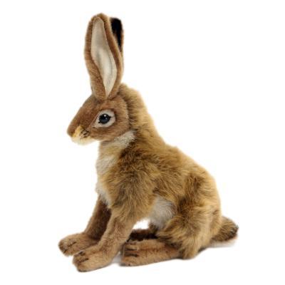 3747번 잭래빗 Jack Rabbit