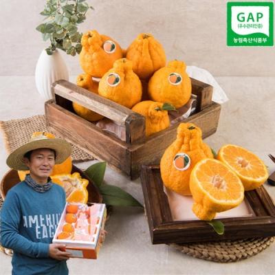 [GAP인증] 농가실명제 품질보장 한라봉 5kg/30과내외