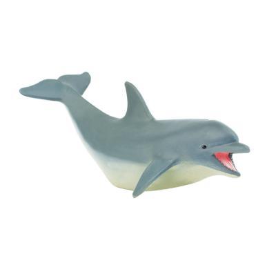 275329 돌고래 Dolphin