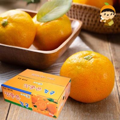 새콤달콤 서귀포 햇 노지감귤 3kg(소)/35개내외