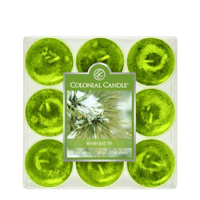 COLONIAL CANDLE 2854 티라이트 9pk 캔들 에메랄드 빛 전나무