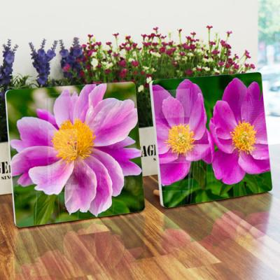 da250-폼아크릴액자18CmX18CmX2ea_분홍빛모란꽃