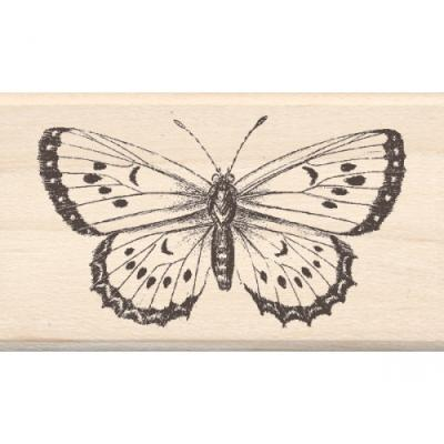 우드스탬프 Big Butterfly