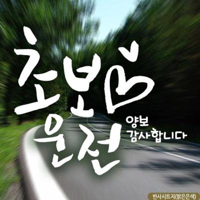 캘리 하트초보운전 화이트 초보운전스티커-반사