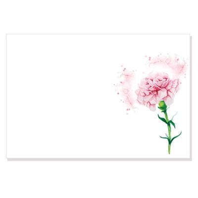 캘리그림엽서-분홍카네이션(10장)