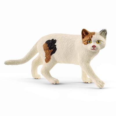 [슐라이히]아메리칸 쇼트헤어 고양이