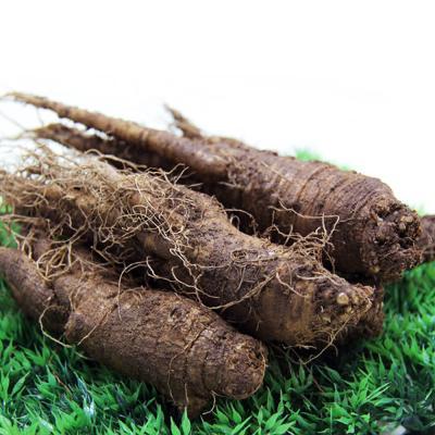 금산 울몸애 더덕(가정실속형)800g(20~30뿌리)