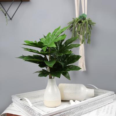 고속터미널꽃시장 팔손이 나뭇잎 35cm 시들지않는꽃