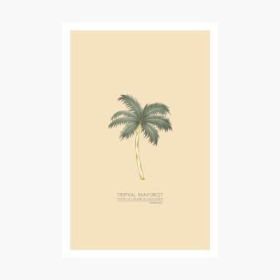 트로피칼 포스트카드 엽서 - Coconut tree