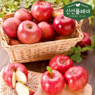 신선플레이 고당도 양광 사과 10kg 21-25과 과일선물