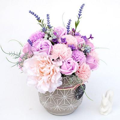 노르딕 비누꽃 카네이션 화분