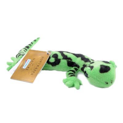 5226번 도롱뇽 Salamander Tiger/20cm.L