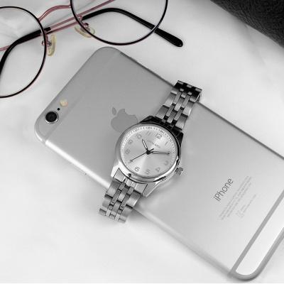 도나소피아 남녀공용 손목시계 패션시계 DS015