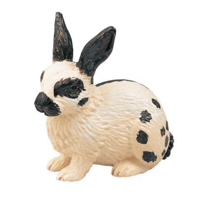 토끼, 검정/흰색