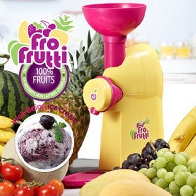 노스텔지아 천연 과일 아이스크림 제조기 FFT-100