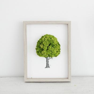 [앨빈디자인] 스칸디아모스 인테리어 액자 1호 9color