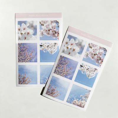 밍키트 벚꽃 투명 스티커