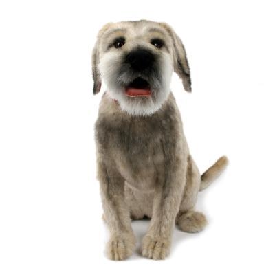 4568번 보더테리어 Dog Border Terrier/70*45cm