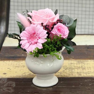 [더봄/프리저브드플라워] 핑크 거베라 화기